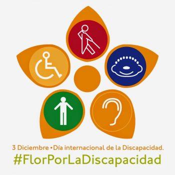 3dic_Dia_Discapacidad